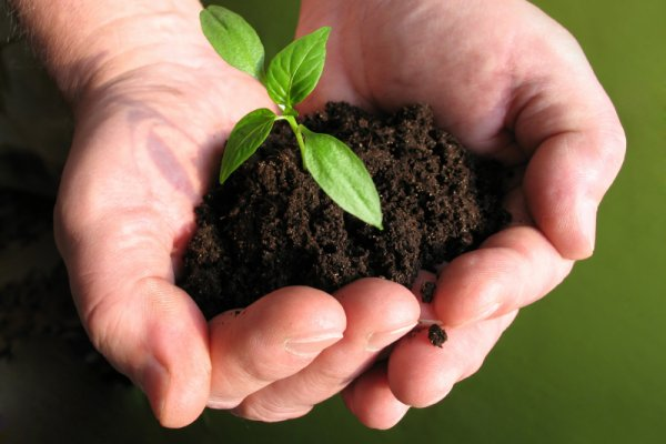 OMK di Tahun 2014: Tantangan dan Kesempatan untuk Berbuat Sesuatu untuk Lingkungan Hidup