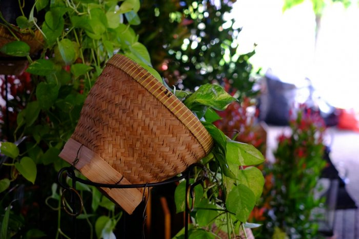 Makna Dekorasi Green Christmas Photobooth 2016 Paroki Tomang - MBK (3)